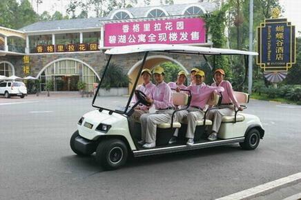 供应电动高尔夫观光车 1