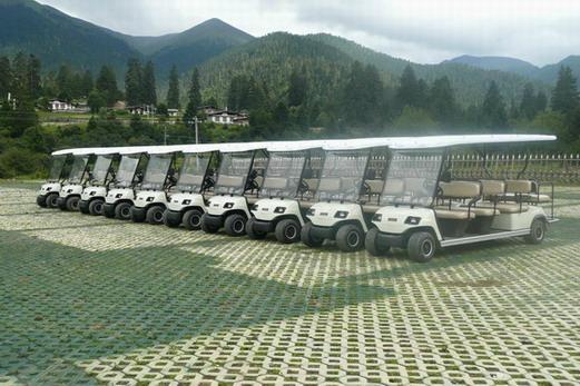 供应电动高尔夫观光车 4