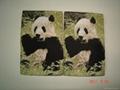 photo woven label(3D) 4