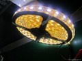 led strip 5050 30leds/M led strip light