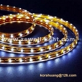 IP68 Waterproof SMD 5050 led strip light WL01-5050W60D-10MM-12V