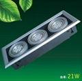 21W led bean light,led lamp,guaranteed 2years