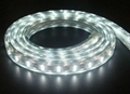 220V 5050 IP68 white led strip lights 60leds/M