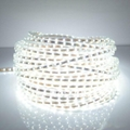 IP65 led strip light,AC220V,SMD3528 60Leds/M,100M/Roll