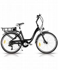 意大利款电动自行车