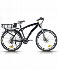 新老鹰款电动自行车