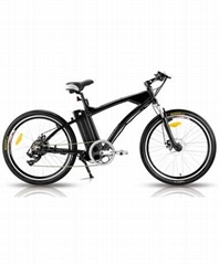 老鹰款电动自行车