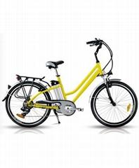 经典款电动自行车