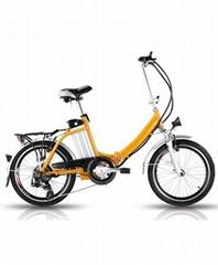 羽毛款电动自行车