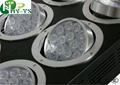 Adjustable Led Growlights Led Aquarium Lighting  5
