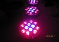 12w Par Led Grow Lights For Vegetables