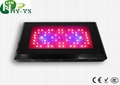 DIY Led Grow Lights 60x3w Led aquarium lighting  1