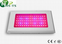 Grow Light 75x3w Led Growing Light For Hydroponics System