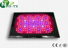 Led Greenhouse Lamp  Led Grow Lights For horticulture hydroponics bonsai Grow