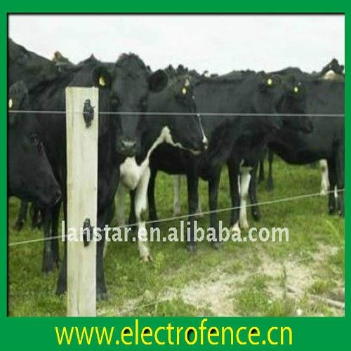 Solar Power Cattle Electric Fence Manufacturer Lx
