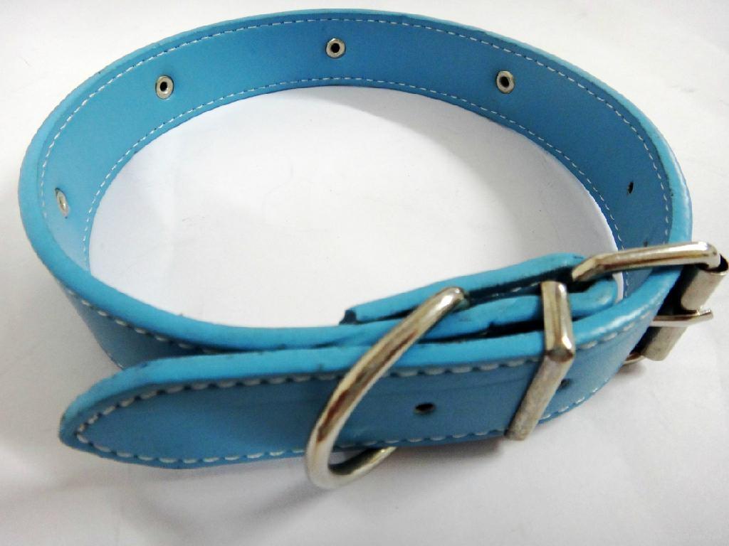 淡蓝色时尚皮质宠物项圈 1