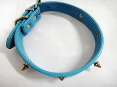 2011浅蓝色时尚宠物项圈