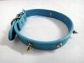 2011浅蓝色时尚宠物项圈 2