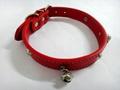 2011红色时尚宠物项圈