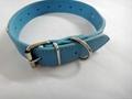 蓝色镶宝石时尚宠物项圈