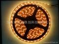 供應LED照明裝飾廠家直銷3528.5050燈條 4