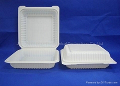 """9"""" Cornstarch Biodegradable Clamshell HYC-9"""