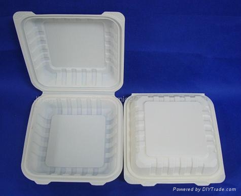 """8"""" Cornstarch Biodegradable Clamshell HYC-8 1"""