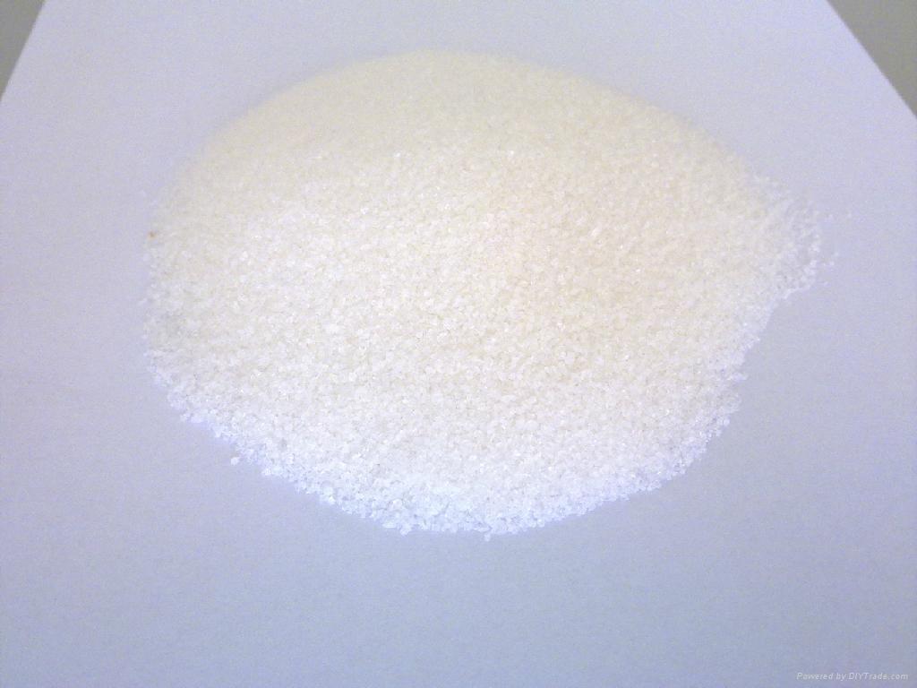 polyacrylamide 1