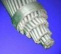 鋁合金芯鋁絞線 ACAR