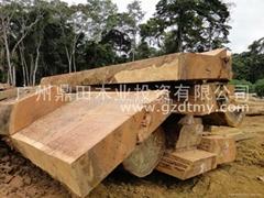 非洲木材厂家直供—巴花木材