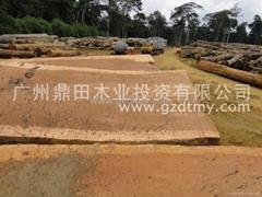非洲木材厂商直供—古夷苏木