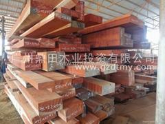 非洲木材厂商直供—非洲红花梨