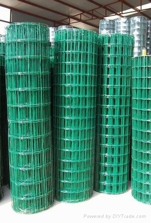 12号热镀锌电焊网厂家  2
