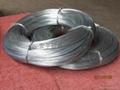 鍍鋅鐵絲軟鐵絲 3