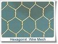 Hexagonal Wire Mesh  Factory