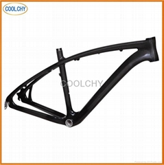 Full Carbon Fibre MTB Frame