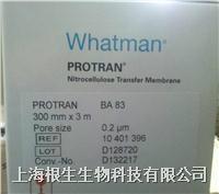 WHATMAN硝酸纤维素膜NC膜0.2um,30cm*3m