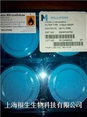 MF-Millipore™ 表面滤膜混合纤维素酯滤膜