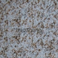 Newly Hot China Granite Tiles