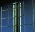 围栏用荷兰铁丝网