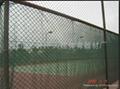 供應球場專用圍網 2