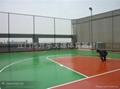供應球場專用圍網 4