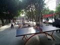 供應室內乒乓球台,室外乒乓球台 1