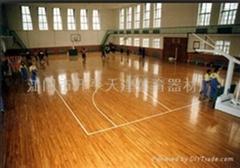 供應體育館木地板籃球場