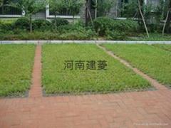 建菱井字植草磚