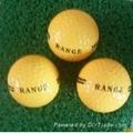 Logo Range Golf Ball