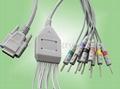 日本光电十二导联线