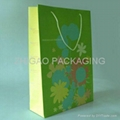 Clothing Paper Shopping Bag Promotional bag