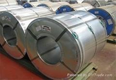 HDG GI Hot dip galvanized steel sheet in coil