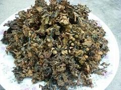 sell Sargassum seaweed